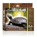 Turtle Island M 876122 by Reptiles-planet