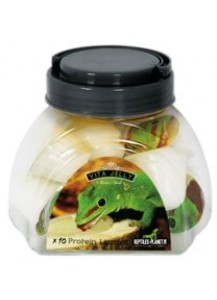 Vita Jelly protein lizzard 10pcs