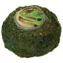 Repti Moss ball pour Jelly 875932 by Reptiles-planet