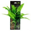 Repti Exotic Plant Nephnolepis Cordifoolia Presl 876022 by Reptiles-planet