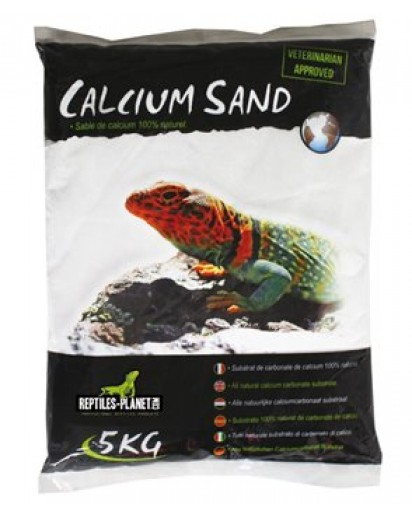 Calcium Sand Artic White 2.5kg 875836 by Reptiles-planet