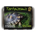 Tortoisemix - Mix graines à germer 876036 by Reptiles-planet