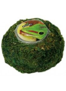 Repti Moss ball pour Jelly