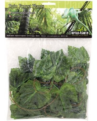 Amazon Jungle Vine 2.6m 876254 by Reptiles-planet